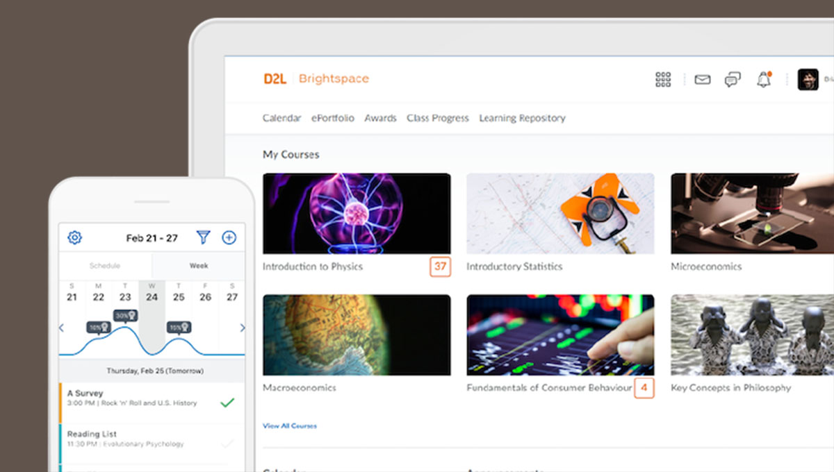 Screen capture of D2L Brightspace
